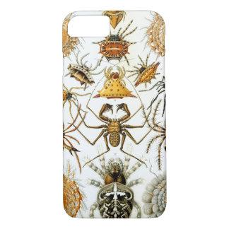 Capa iPhone 8/7 Impressão do vintage dos aracnídeos das aranhas de