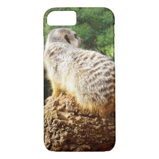Capa iPhone 8/7 Meerkat com vistas altas,