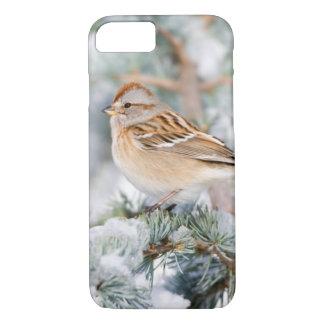 Capa iPhone 8/7 Pardal de árvore americano no inverno