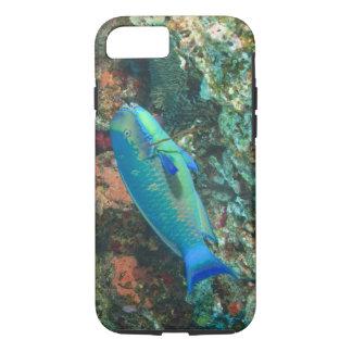 Capa iPhone 8/7 Parrotfish perto da ilha de Taveuni, Fiji, sul