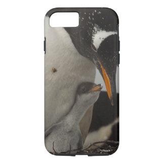 Capa iPhone 8/7 Pintinho de alimentação do pinguim de Gentoo