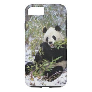 Capa iPhone 8/7 Província de China, Sichuan. Alimentações da panda