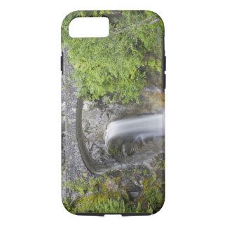 Capa iPhone 8/7 WA, parque nacional de Monte Rainier, quedas de