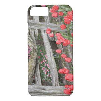 Capa iPhone 8/7 WA, vale de Skagit, jardim da tulipa de