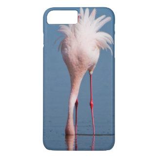 Capa iPhone 8 Plus/7 Plus Alimentação de dois pouca flamingos (menor de