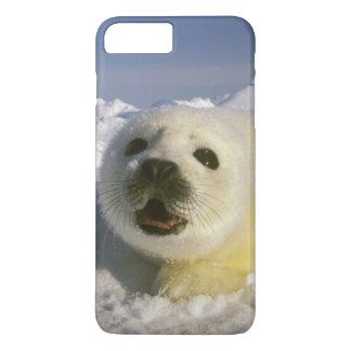 Capa iPhone 8 Plus/7 Plus America do Norte, Canadá, golfo de St. Lawrence. 5