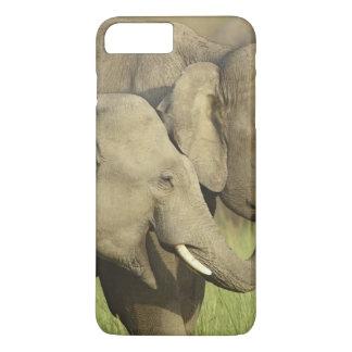 Capa iPhone 8 Plus/7 Plus Elefantes indianos/asiáticos que compartilham da