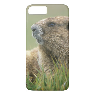 Capa iPhone 8 Plus/7 Plus EUA, Washington, olimpiadas NP, marmota olímpica