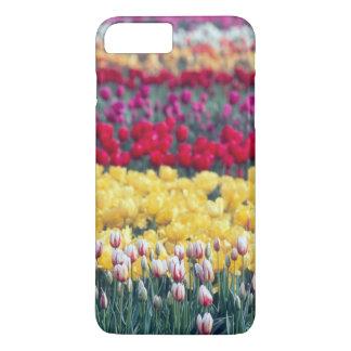 Capa iPhone 8 Plus/7 Plus Jardim da exposição da tulipa no vale de Skagit,