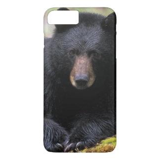 Capa iPhone 8 Plus/7 Plus Urso preto em um início de uma sessão da floresta