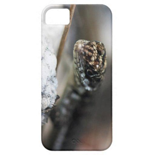 Capa para celular Lagarto Capas iPhone 5