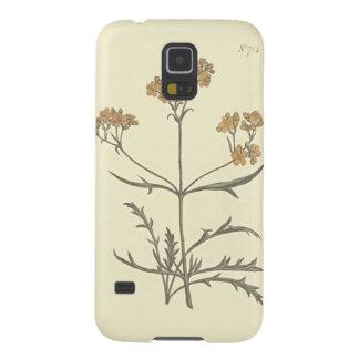 Capa Para Galaxy S5 Ilustração botânica do Valerian Siberian