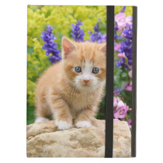Capa Para iPad Air Gatinho macio bonito do gato do gengibre na foto