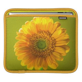 Capa Para iPad Flor amarela do Gerbera da margarida