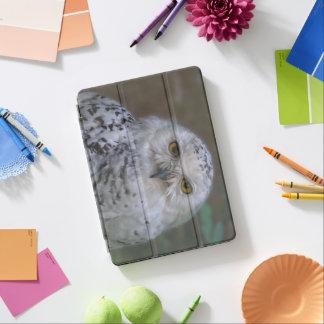 Capa Para iPad Pro Coruja nevado, Schnee-Eule