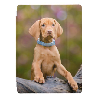 Capa Para iPad Pro Foto puppyeyed bonito do filhote de cachorro do