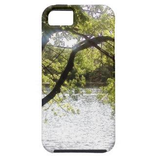 Capa Para iPhone 5 Reflexões nas madeiras