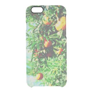 Capa Para iPhone 6/6S Transparente tangerinas no ramo. coleção da fruta