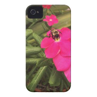 Capa Para iPhone abelha
