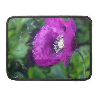 CAPA PARA MacBook DSC_0695.00