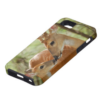 CAPA TOUGH PARA iPhone 5