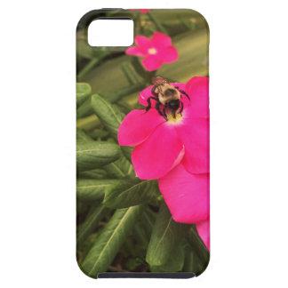 Capa Tough Para iPhone 5 abelha