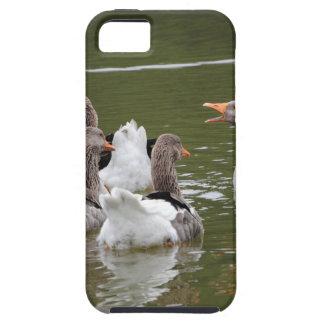 Capa Tough Para iPhone 5 Patos