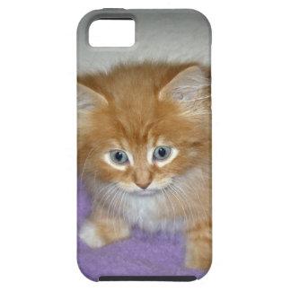 Capa Tough Para iPhone 5 Ponto neste gatinho
