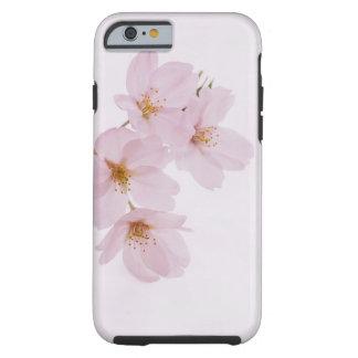Capa Tough Para iPhone 6 Flores de cerejeira bonitas do primavera em Tokyo