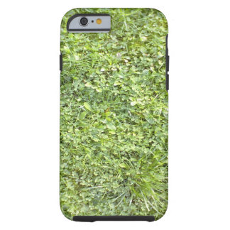 Capa Tough Para iPhone 6 Grama verde