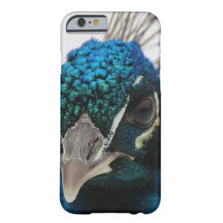 capas de iphone de Apple do pavão das capas de