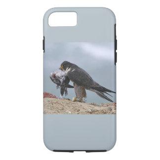 Capas de iphone do falcão de peregrino