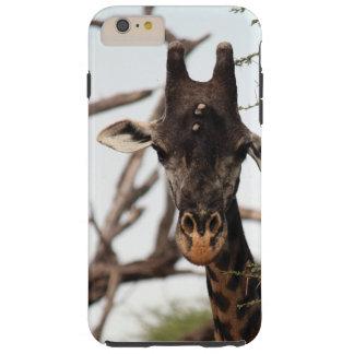 Capas de iphone do girafa