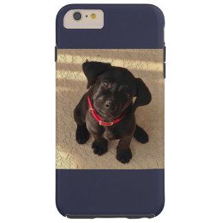 Capas de iphone pretas do filhote de cachorro do