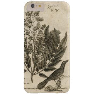 Capas iPhone 6 Plus Barely There Quadro botânico do Sepia