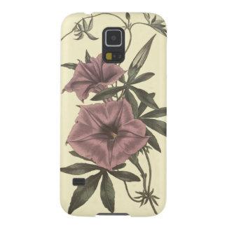 Capas Par Galaxy S5 Ilustração botânica da trepadeira egípcia