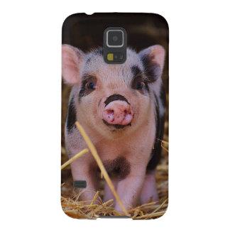 Capas Par Galaxy S5 mini porco