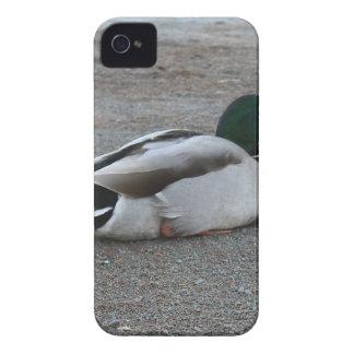 Capas Para iPhone 4 Case-Mate Pato