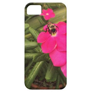 Capas Para iPhone 5 abelha