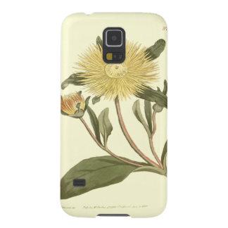 Capinha Galaxy S5 Grande ilustração amarela do cravo-de-defunto de