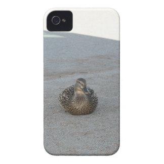 Capinha iPhone 4 Patos