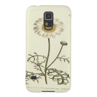 Capinhas Galaxy S5 Ilustração amarela Tricolor do crisântemo