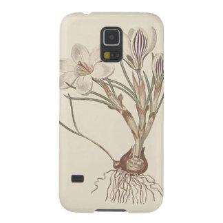 Capinhas Galaxy S5 Ilustração botânica do açafrão escocês
