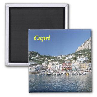 capri_island, ímã de Capri Imã De Geladeira