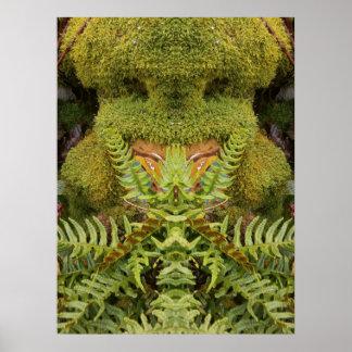 Cara do poster de Orville do ` da natureza