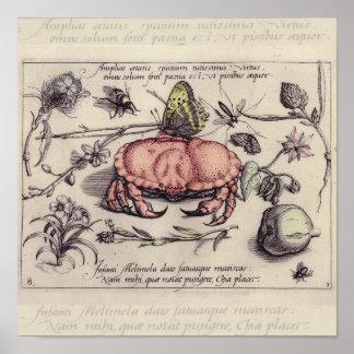 Caranguejo, Botanicals, insetos, e flores do vinta Poster