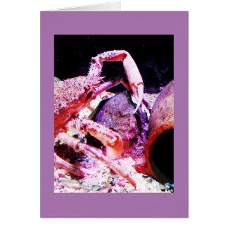 Caranguejo de aranha cartão comemorativo