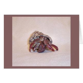Caranguejo de eremita #5 cartão comemorativo