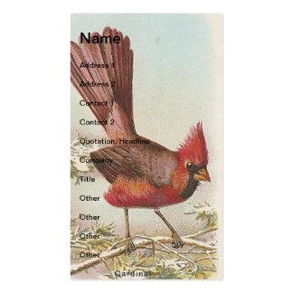 Cardeal do vintage modelo cartões de visitas