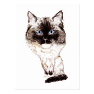 Caricatura de Ragdoll Cartão Postal